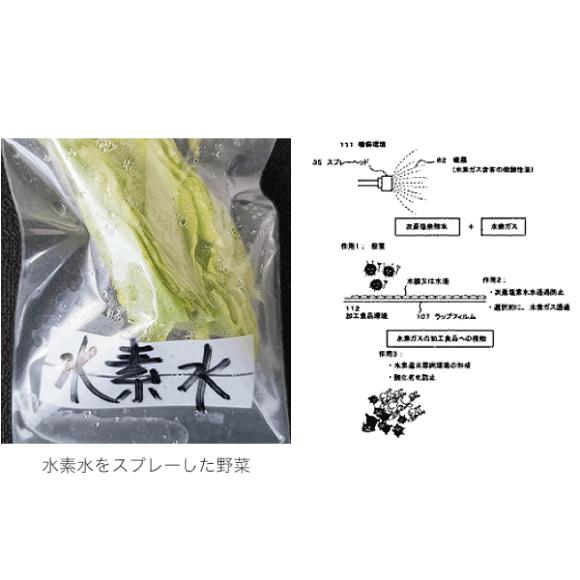(9) 加工食品の処理方法及び加工食品の処理システム、及び生鮮食品及び加工食品を同一の密閉された環境装置内で保存する方法